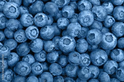 Canvastavla Close up background of blue toned fresh blueberry
