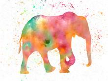 Elephant In Watercolor 01