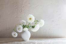 Asters In Vase On White Wooden...