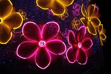 Closeup Shot Of Decorative Neo...