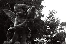 Greyscale Closeup Of An Angel ...
