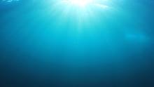 Underwater Blue Background Pho...