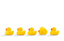 Yellow Rubber Ducks In A Row, Photographed On A Studio Background