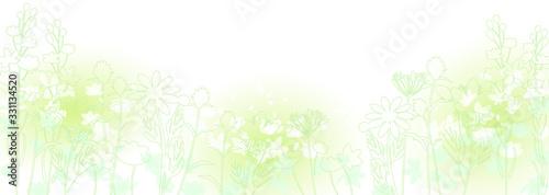 Fototapeta 初夏の草花 obraz