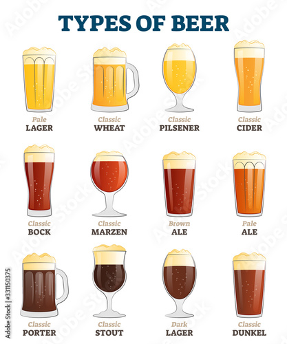 Obraz Types of beer vector illustration. Alcoholic beverage menu collection set. - fototapety do salonu