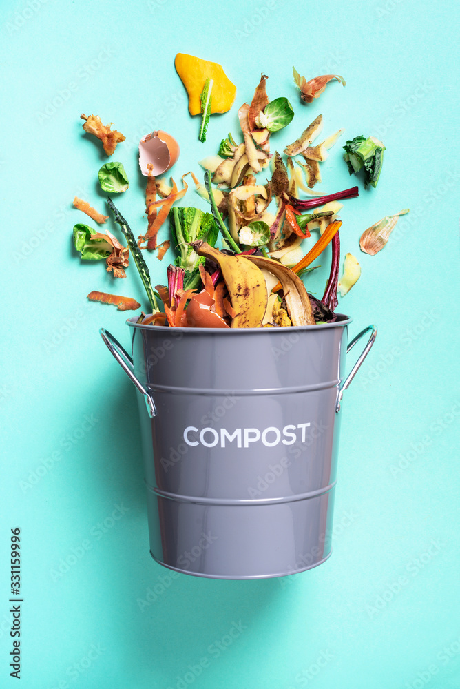 Fototapeta Peeled vegetables in white compost bin on blue background. Trash bin for composting with leftover from kitchen on blue background. Top view. Recycling scarps concept. Sustainable and zero waste