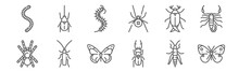 Set Of 12 Insects Icons. Outli...