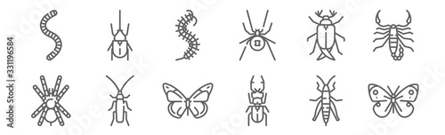 set of 12 insects icons. outline thin line icons such as butterfly, beetle, cockroach, bug, worm, beetle