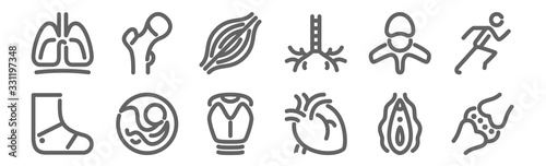 set of 12 anatomy icons Canvas Print