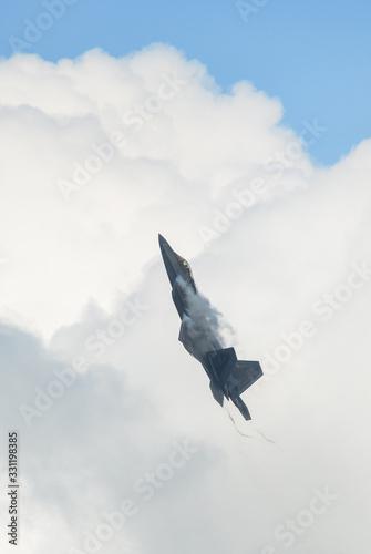 Canvas USAF Lockheed Martin F-22 Raptor flying for display