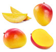canvas print picture - Collection mango isolated on white background. Mango fruit clipping path. Mango macro studio photo