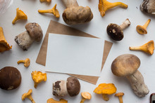 Autumn Mockup With Mushrooms. ...
