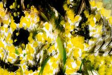 Mimose Gialle, Dipinto Astratt...