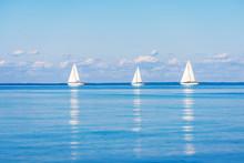 Sailing Yacht Regatta. Sloop R...