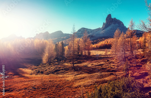 Wall mural - Beautiful Dolomite mountains and forest during sunset landscape. Amazing nature landscape under sunlight. Federa lake. Dolomites Alps. Italy. Wonderful Sunny Scenery of Mountains Valey in Alps.