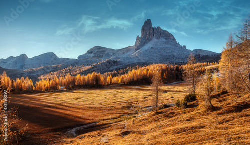 Wall mural - Awesome alpine highland in sunny day. Wonderful Dolomites Alps during sunset. Alpine valley under sunlight. Beautifyl Nature landscape with rock mount and forest glowing sunlit. Dolomites Alps. Italy