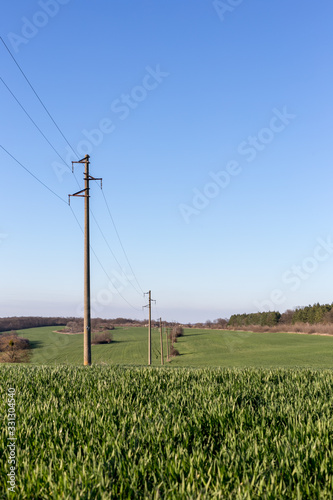 Valokuva A line of electric poles with cables of electricity in a field with a forest in background in spring time during the day