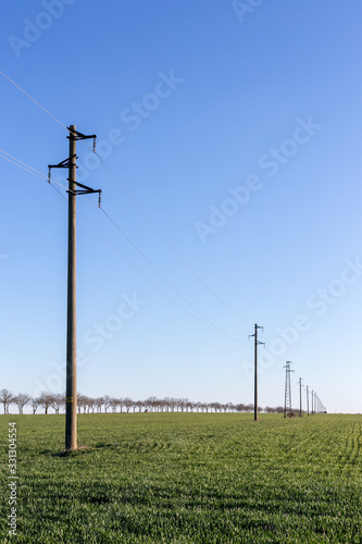 A line of electric poles with cables of electricity in a field with a forest in background in spring time during the day Canvas-taulu