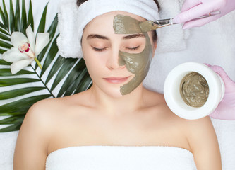 Panel Szklany Do Spa Beautician makes a face clay mask against acne on the face of a woman to rejuvenate the skin. Cosmetology treatment of problem skin on the face and body.