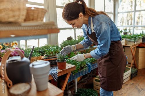 Obraz Young woman bending towards a green plant - fototapety do salonu