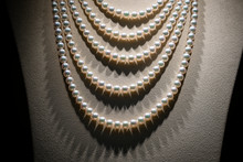 Beautiful Pearl Necklace On Mannequin, Close Up