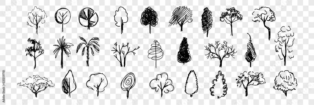 Fototapeta Hand drawn trees doodle set collection