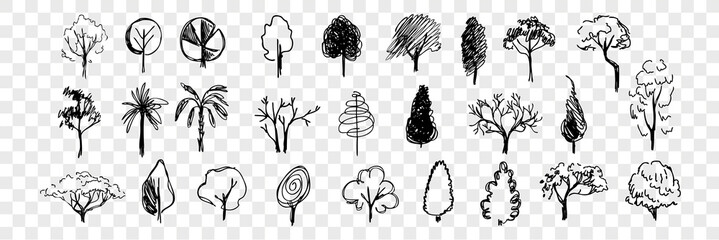 Hand drawn trees doodle set collection
