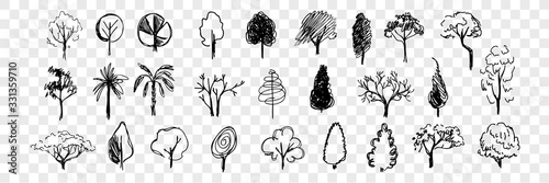 Obraz Hand drawn trees doodle set collection - fototapety do salonu