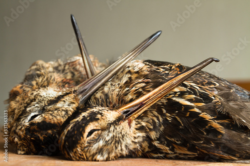 two snipe and woodcock are on the kitchen table Tapéta, Fotótapéta