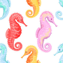 Sea Horse. Seamless Pattern Wi...