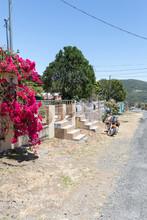 Costa Rica Street In Orosi Town