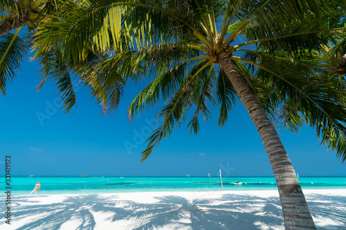 Sandy beach of tropical island in the Maldives - 331419173