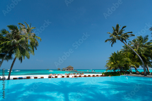 Fotomural Sandy beach of tropical island in the Maldives