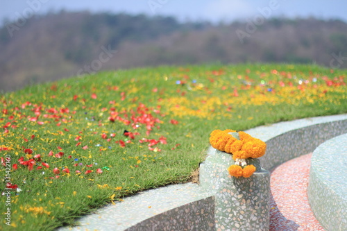 flower and field in the qingming festival or ancestor worship or sweeping tomb d Tapéta, Fotótapéta