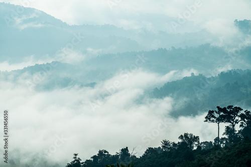 Pola ryżowe w górach na północy Tajlandii w porze deszczowej