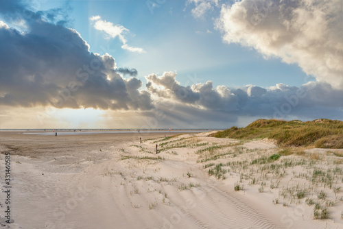 Dune landscape on the beach of St Peter-Ording #331460585
