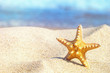 Leinwandbild Motiv Starfish in the sand against the background of the surf in the rays of summer sun, close-up