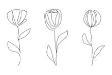 Vector Line Art Flowers. Minim...