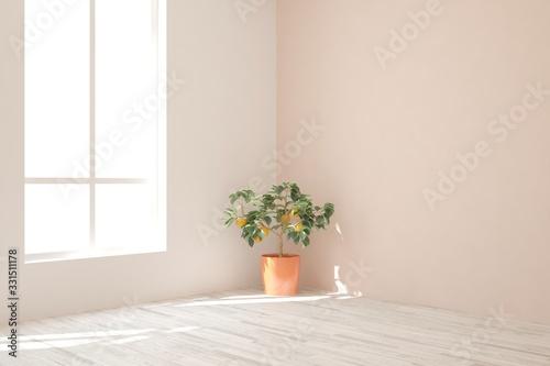 White empty room. Scandinavian interior design. 3D illustration Fototapete