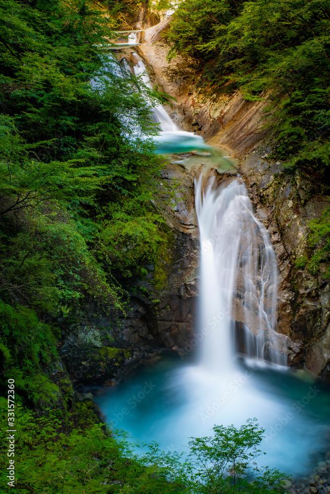 Fototapeta 美しき滝の流れ