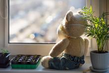 Sad Knitted Teddy Bear Wearing...