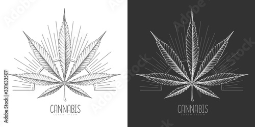 Fototapeta Realistic hand drawing cannabis leaf silhouette on day and night background. Vector illustration obraz