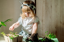 Little Baby Girl Gardener With...