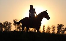 Beautiful Cowgirl Bareback Lea...