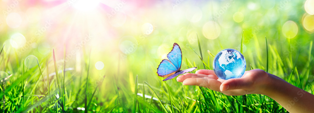 Fototapeta Butterfly meet Human Hand With Glass Globe - Love And Care Environment Concept
