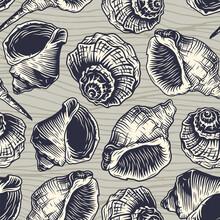 Seamless Pattern Seashell Moll...