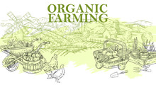 Vector Vintage Banner With Rural Landscape In Engraving Style. Illustration With Garden, Mill, Fields, Chickens, Apple Harvest And Seedlings. Background For Organic Farming Posters, Landing Pages.