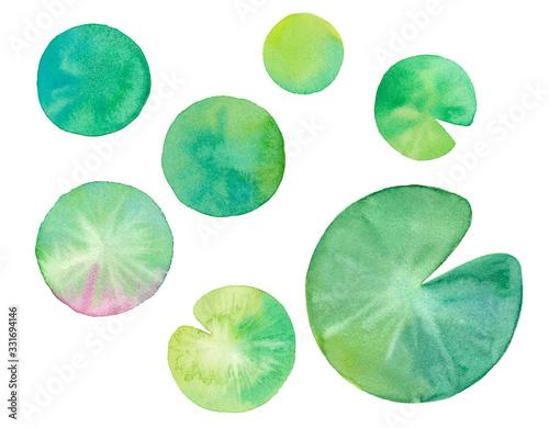 Photo 夏の素材:睡蓮の葉の水彩イラストのトレースベクター