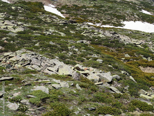 Photo rocky mountainside covered with fresh green grass, flowers and a little snow tha