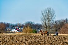 Amish Farmer Plowing Field